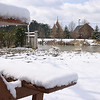 February Snow : A glimpse of the snowy grounds at St. George Village, Feb. 13, 2010